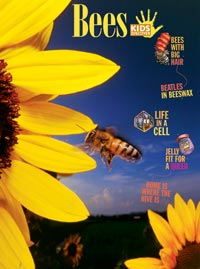 Bees - Kids Discover