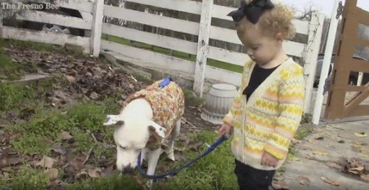 1611568276.7501 1 - Vagabundo con enfermedad terminal solo quiere que su perro esté bien cuidado. Es su último deseo