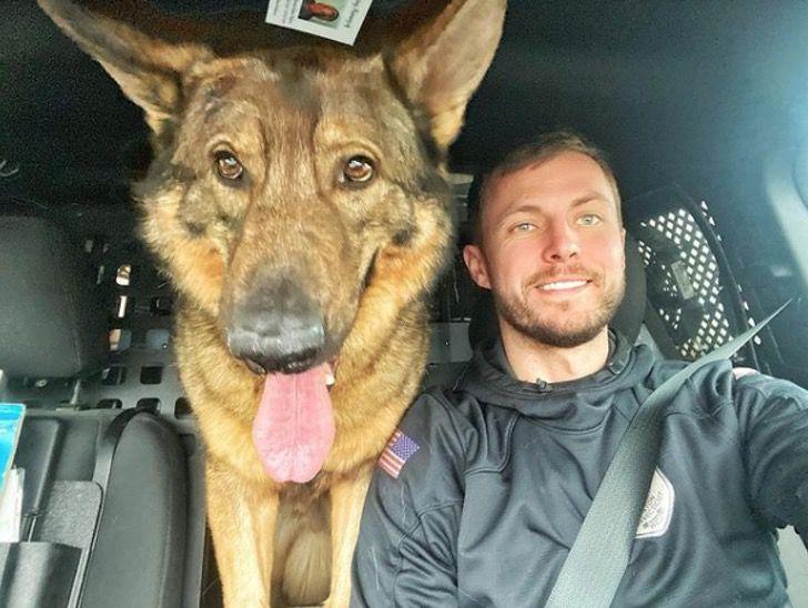 Captura de Pantalla 2021 01 28 a las 11.40.41 - Perro policía ama estar junto a la bebé de la familia. Es un guardián dentro y fuera de la casa
