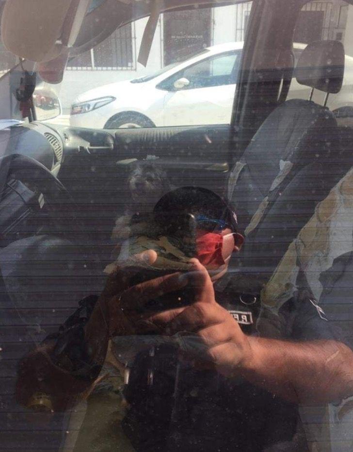 Captura de Pantalla 2021 03 01 a las 17.19.46 - Mujer irresponsable dejó a su perro dentro de un auto sin ventilación. Lo salvaron y la multaron