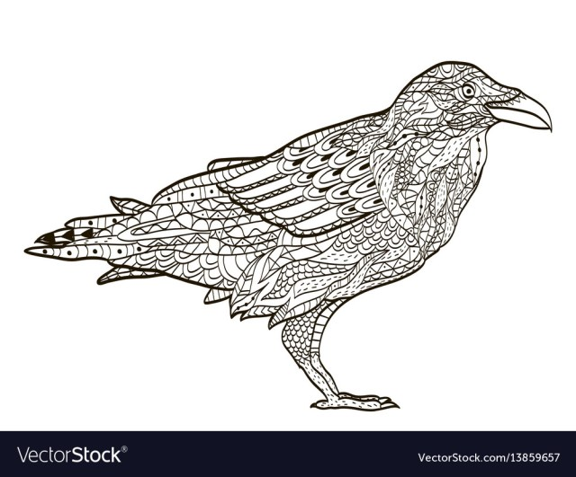 Bird raven coloring book for adults Royalty Free Vector