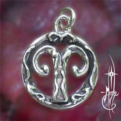 The Aries Amulet