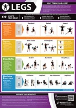 Leg Exercise Chart Leg Exercise Poster Leg Exercises