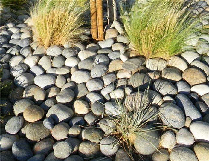 Decorative Pebbles Sale