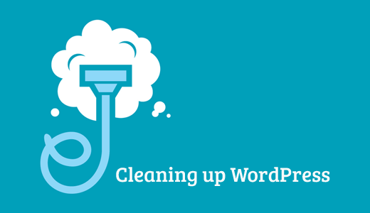 Cleaning up WordPress Database