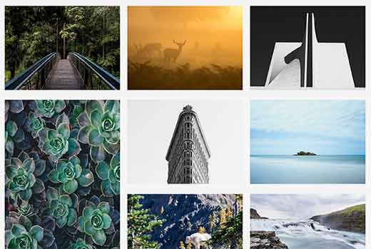 How to Find Beautiful Background Images for Your WordPress ...