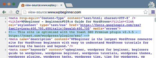 Meta information added by WordPress plugins
