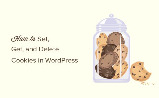 How to set, get, and delete cookies in WordPress