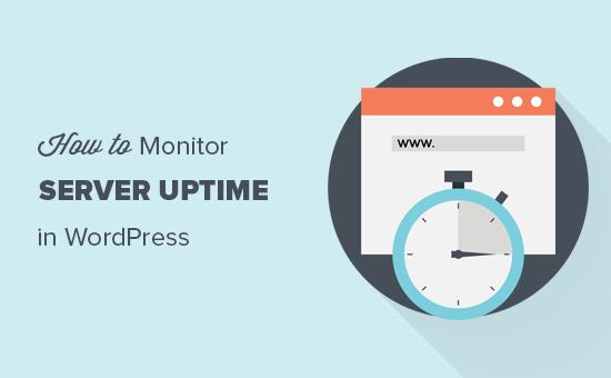 Monitoring your WordPress server uptime