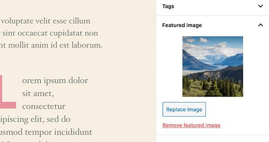 Aanbevolen beeldvoorbeeld in de berichteditor