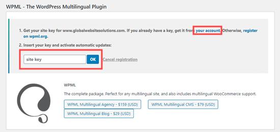 Memasukkan kunci situs untuk WPML