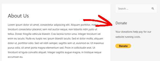 The Donate widget live in the sidebar on our demo website