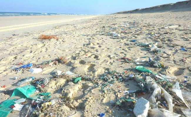 plásticos oceano