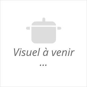 grande coupe conservation fruits et legumes ceramique et liege emile henry blanc craie