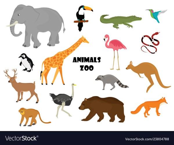 Zoo animals Royalty Free Vector Image - VectorStock