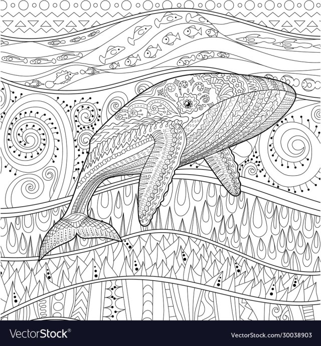 Coloring pages for adult with blue whale Vector Image