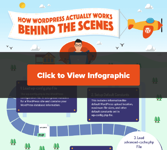 Click to View the Behind the Scenes WordPress Infographic