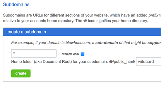 Adding wildcard subdomain