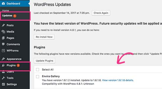 WordPress plugin update available