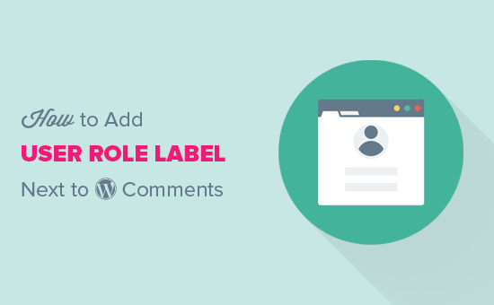 Add user role next to comments in WordPress