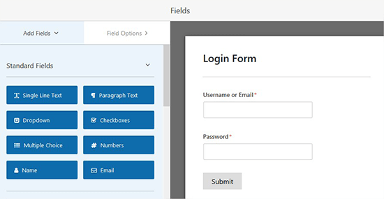 Login form fields