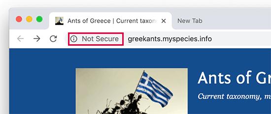Tidak ada label aman yang ditampilkan di browser web Google Chrome