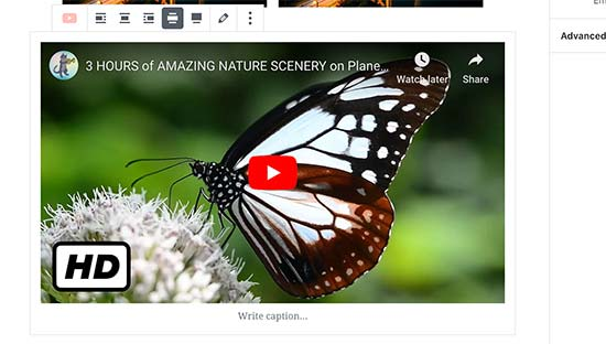 Встраивание видео YouTube в WordPress