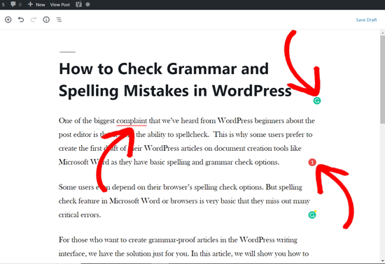 Grammarly Suggestions on a WordPress post