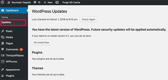 Keeping WordPress updated