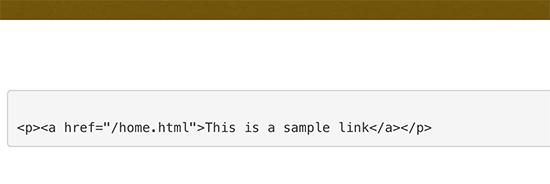 Manually displaying code in WordPress