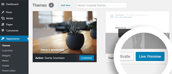 WordPress Theme Live Preview Option