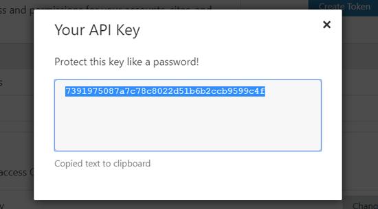 Copy Cloudflare API Key