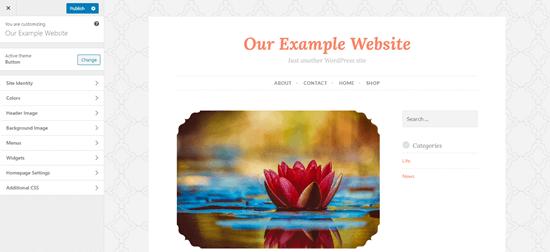 The Theme Customizer in WordPress