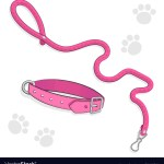 Set Cute Puppy Or Kitty Stuff Royalty Free Vector Image