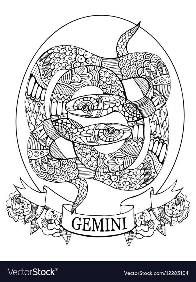Gemini zodiac sign coloring book for adults Vector Image
