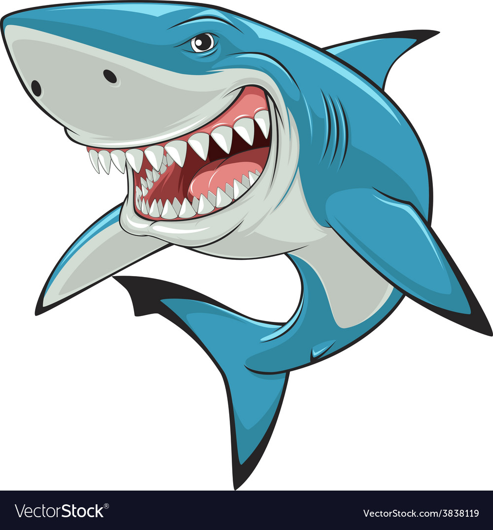 White shark Royalty Free Vector Image VectorStock