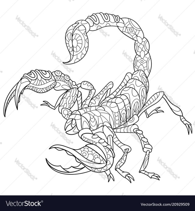 Scorpion coloring page Royalty Free Vector Image