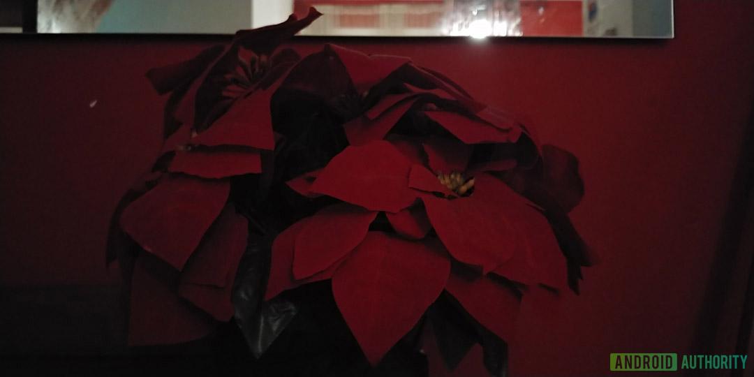 LG V30S ThinQ Bright Mode flower