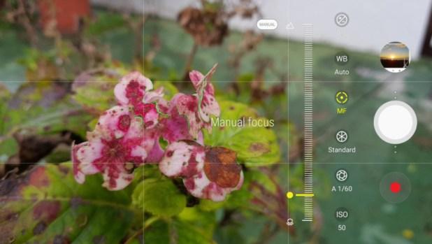 Focus peaking on a Samsung phone.