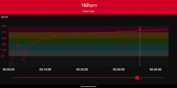 polar h10 heart rate sensor stats
