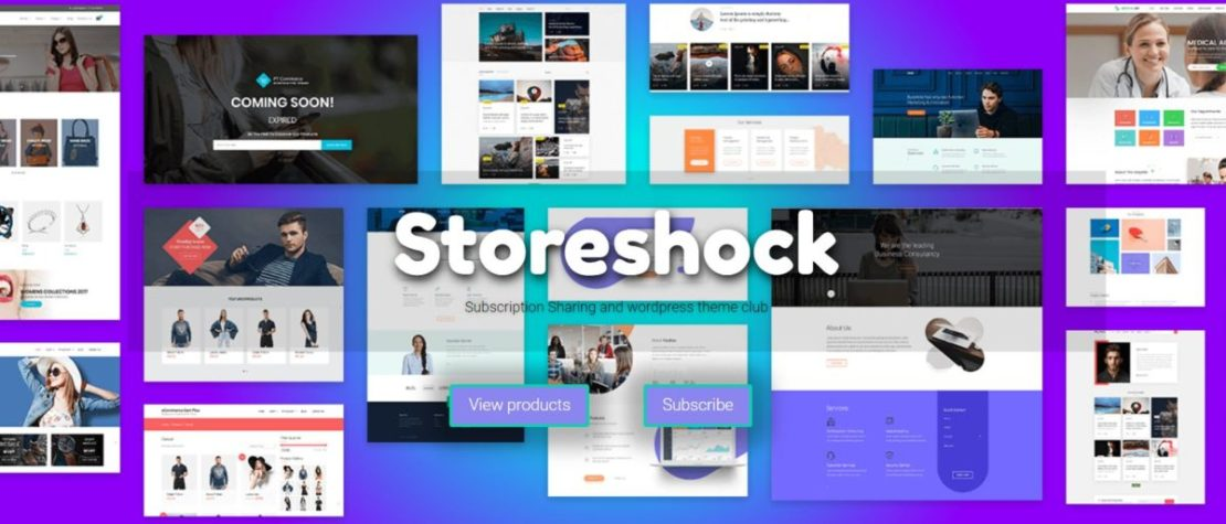 Storeshock WordPress Themes and Elements