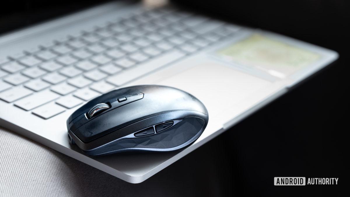 Equipe AA escolhe Lily Katz Logitech MX Anywhere 2 mouse 1