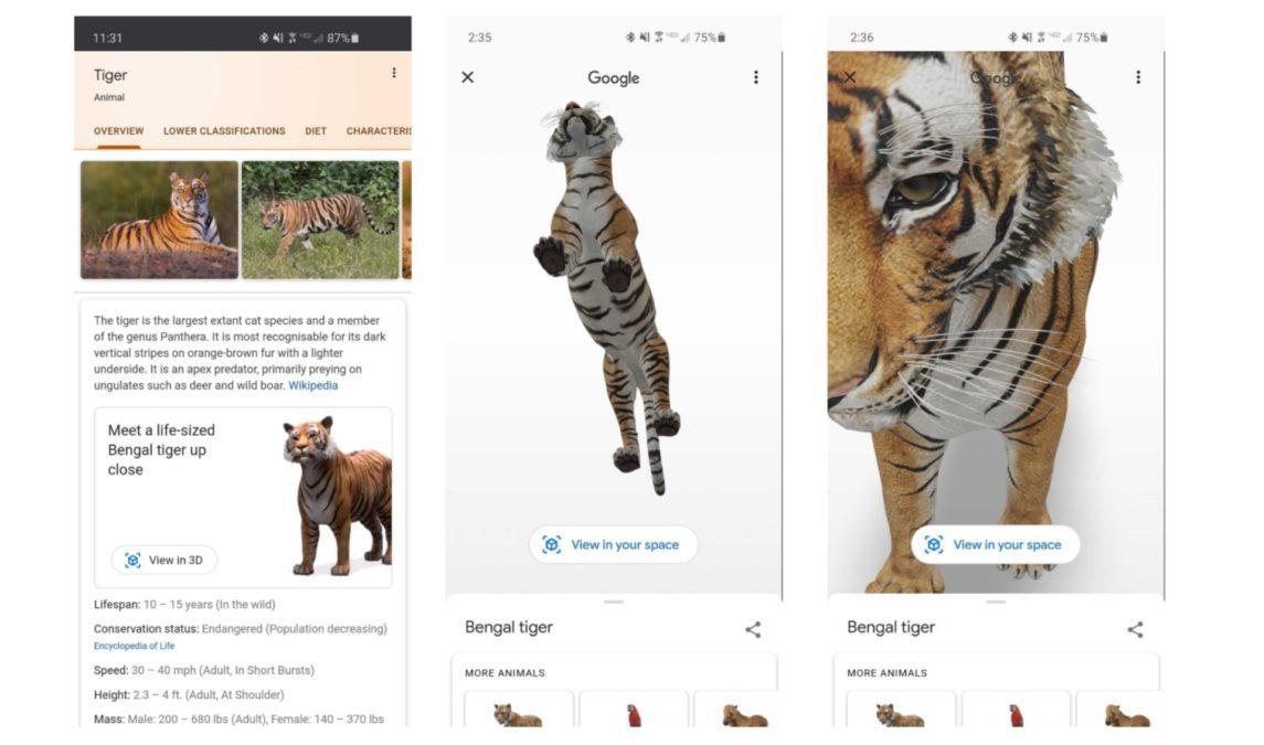 композитный вид объекта тигра