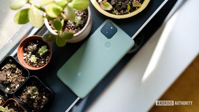 Google Pixel 5 on windowsill