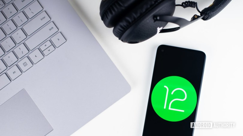 Android 12 stock photo 7