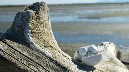 The Google Pixel Buds A-Series are sitting on a piece of driftwood at a beach.