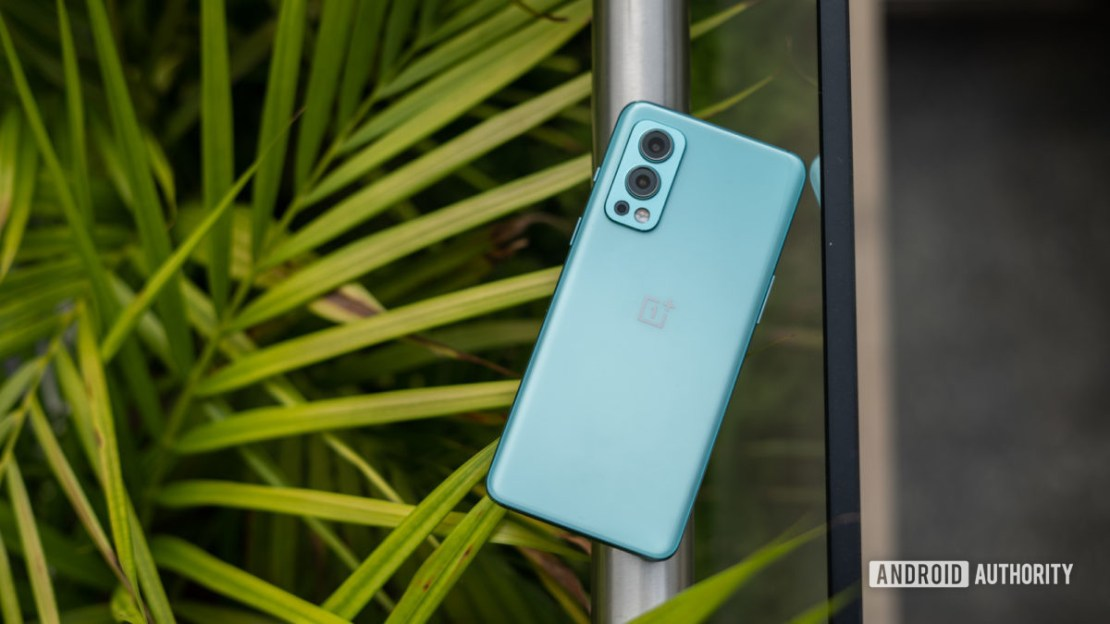 OnePlus Nord 2 top down view outside with foliage