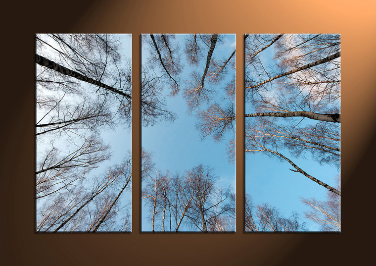 3 Piece Blue Canvas Forest Artwork