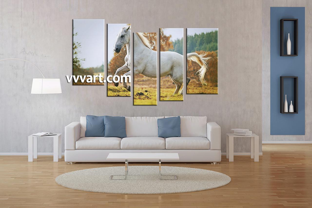 5 Piece Wildlife White Horse Large Canvas