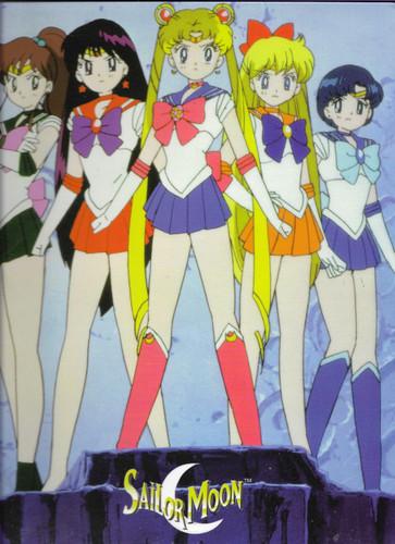 Sailor Moon Folder